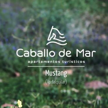 Casa Rural Mustang